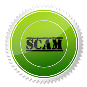 Six Figure Income SFI Scam
